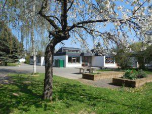 Bundesweiter Vorlesetag: Natur und Umwelt @ Grundschule Burgholzhausen
