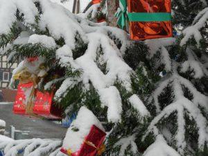 Burgholzhäuser Weihnachtsbaum aufstellen @ Freier Platz, Ortskern