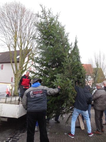 Burgholzhäuser Weihnachtsbaum