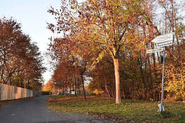 Burgholzhausen im Herbst