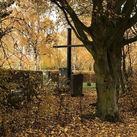 Friedhof Burgholzhausen