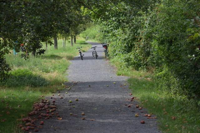 Fahrrad Friedrichsdorf