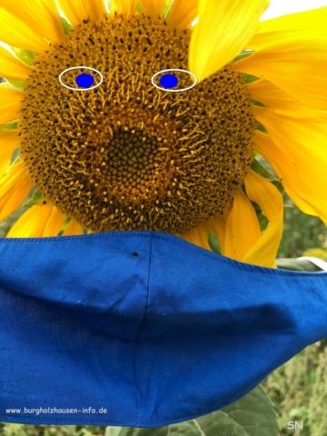 Nasen-Mund-Schutz Corona