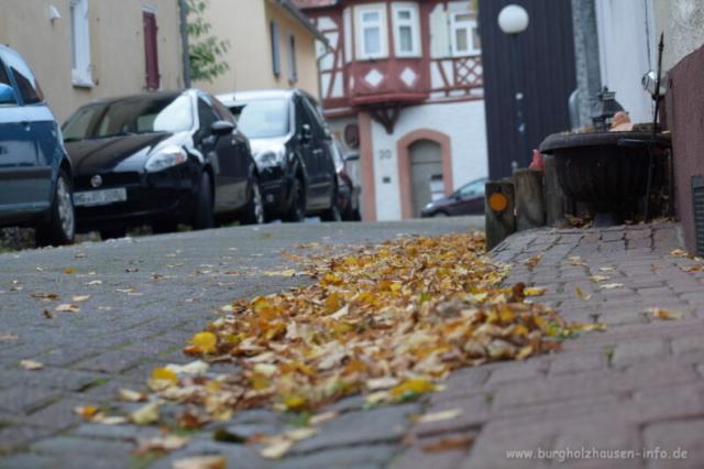 Burgholzhausen Herbst Alt Burgholzhausen