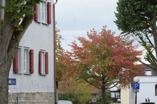 Burgholzhausen Herbst