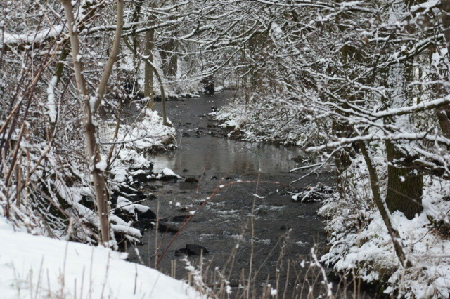 Burgholzhausen Winter 2021 burgholzhausen-info.de