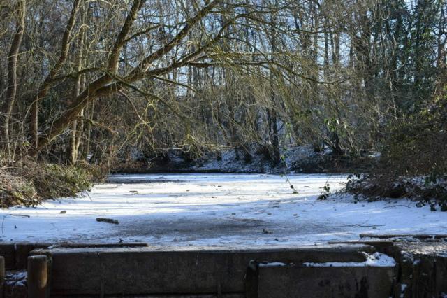 Burgholzhausen Teich Winter Natur Paradies