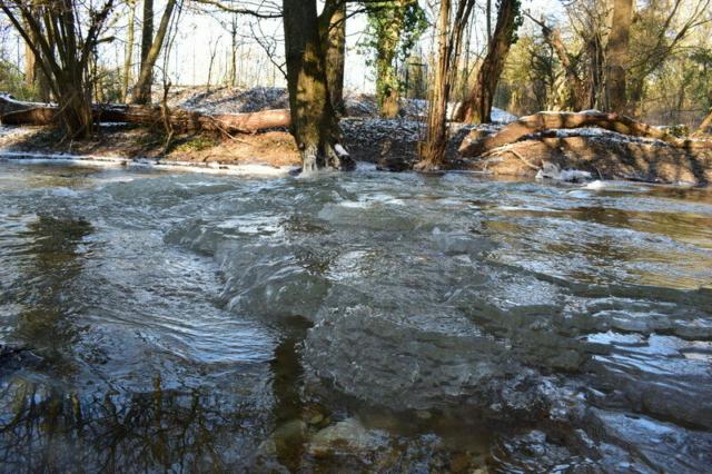 Burgholzhausen Erlenbach Winter Natur Eisschollen
