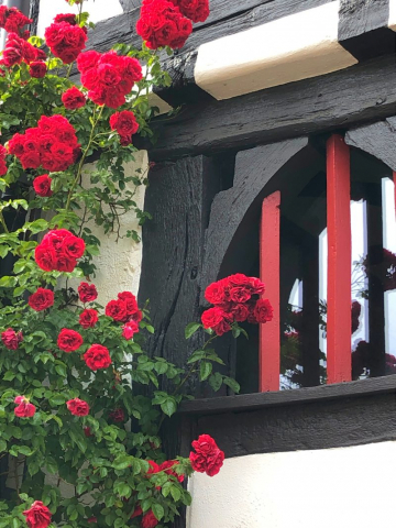 Rosen, Burgholzhausen, Altes Rathaus, Burgholzhäuser Stadtteilseite